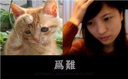 美女模仿小动物的可爱表情